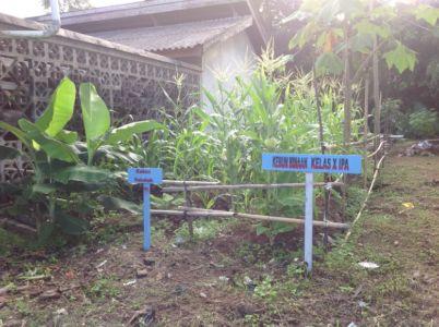 Kebun Binaan Siswa